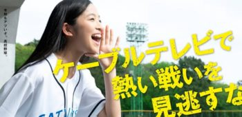 CATVase.jp 2019